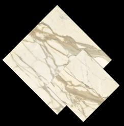 หิน Calacatta Maestro